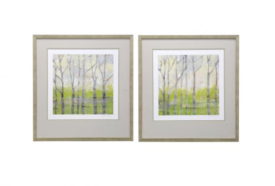 Contemporary Framed Print of Birch Trees in Spring main image