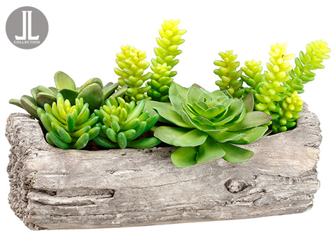 "8""SUCCULENT GARDEN IN LOG  main image"