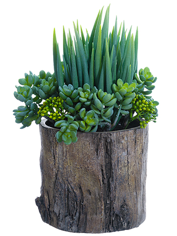 "14""SUCCULENT GARDEN IN POT  main image"