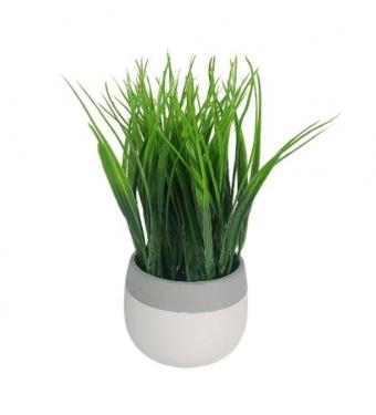 Small White and Grey Pot & Plant main image