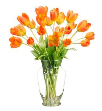 Tulip in Glass Vase Orange main image