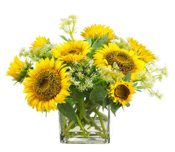 Sunflower/Queen Anne's Lace in Glass Vase Yellow main image