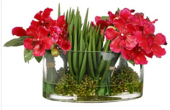 Vanda Orchid in Glass Vase Beauty Green  main image