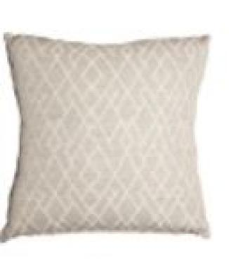 Astro Silver Pillow main image