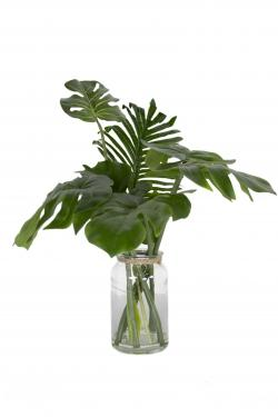 Clear Vase & Various Leaves main image