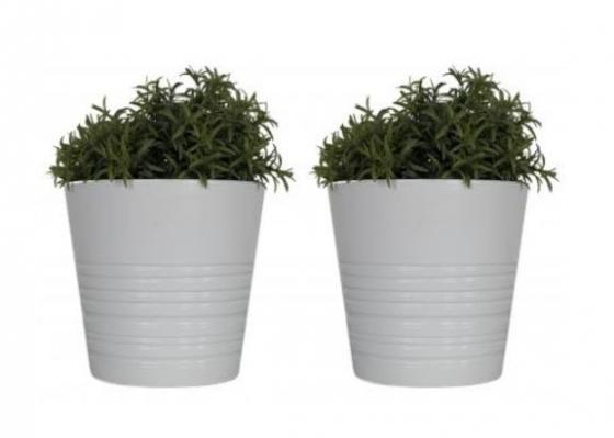 Set of Two White Potted Plants main image