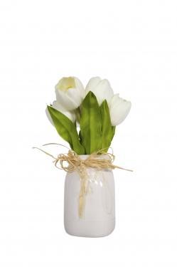 White Tulips main image