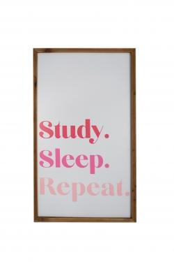 Study, Sleep, Repeat main image