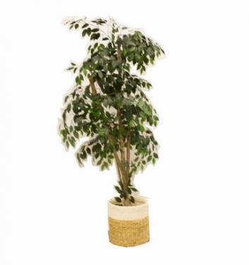 Green Artificial Tree in Wicker Basket main image