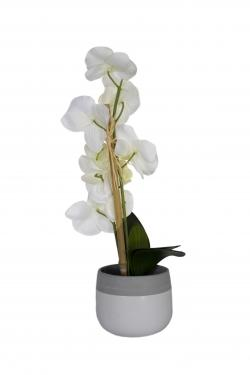 Grey Pot & White Orchid main image