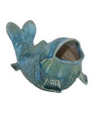 Blue Coy Fish - Turquoise main image