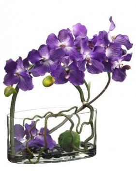 Purple Silk Orchid Arrangement  main image