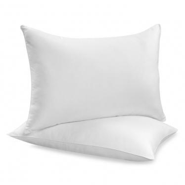 2 Standard Pillows main image