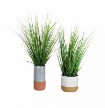 Potted Plants Set main image