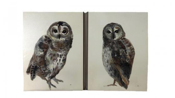 Owls Art Set of 2 main image
