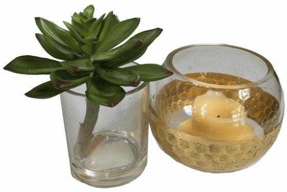 Glass Votive and Succulent main image