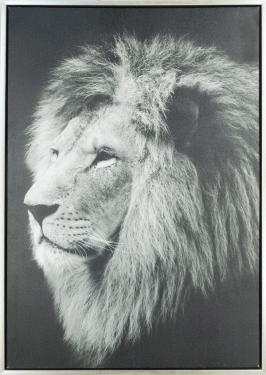 Lion Art work  main image