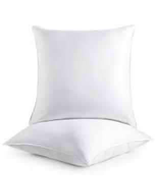 Two Euro Pillow Inserts main image