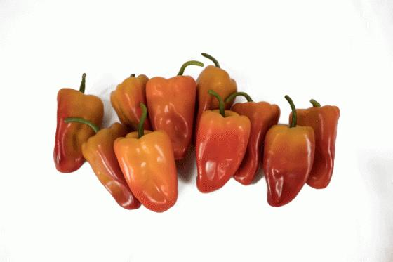 Orange Pepper Set of 10  main image