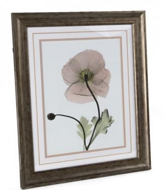 Poppy Art main image