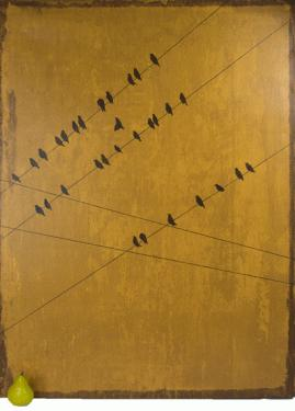 Birds on a line main image
