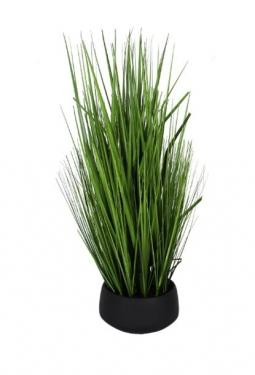 Grass in Black Pot main image