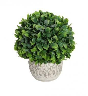 Potted Plant in Grey Vase main image