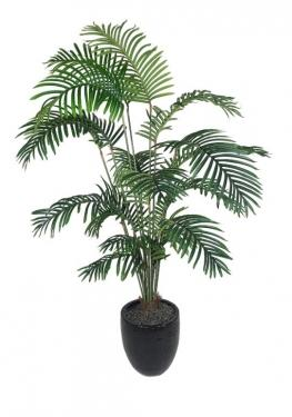Palm Tree In Black Planter main image