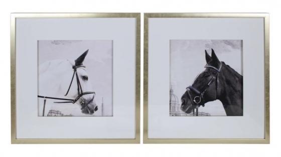 Black & White Horse Art main image