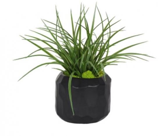 Grass In Black Geo Pot main image
