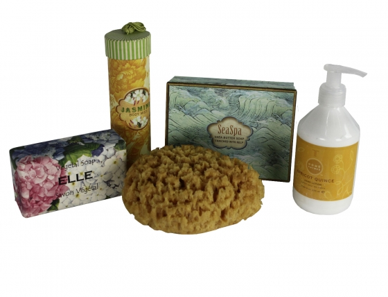 Bath and Sponge Soap Set main image