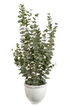Eucalyptus in Ceramic Vase Green main image