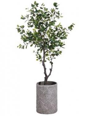 6.5' EVA Ficus Tree in Fiber Cement Planter Green main image