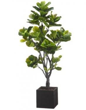 6' EVA Fiddle Tree in Basket main image