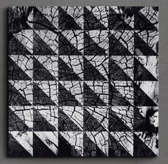 Symmetrical Grain Printed Canvas main image