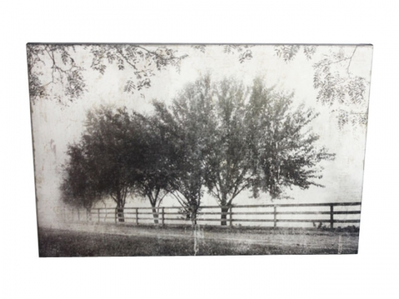 Trees on Canvas Wall Art main image
