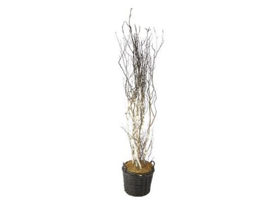 Birch Branches in Basket Decor main image