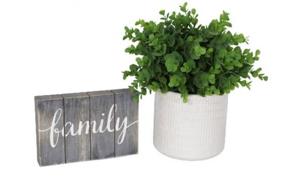 Family Art and Plant Set