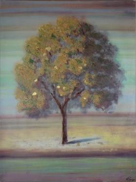 Tree Canvas main image